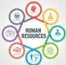 İnsan Kaynakları Uzmanlık Sertifikası