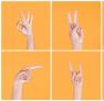 Ücretsiz İşaret Dili Eğitimi